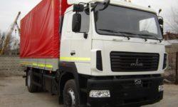 novyi-gruzovoi-avtomobil-maz-4371v2-521-000-zubrenok-5-tonn-photo-8025