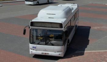 МАЗ 103966 full